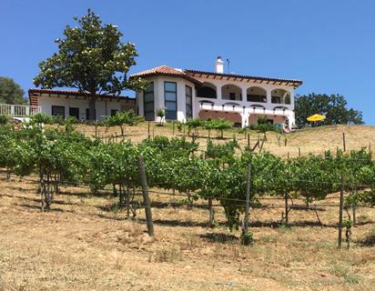 Butterfly Creek Winery Mariposa